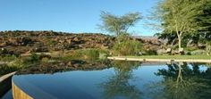 Infinity Pool at Bushman Kloof South Africa Tours, South Africa Safari, Lodges, West Coast, Wilderness, Skiing, Golf Courses, River, Park