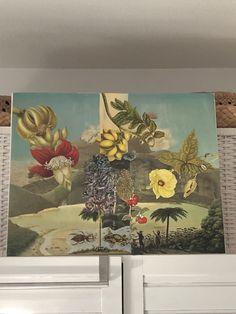 Pin van Studio Orenda