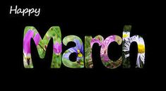 Happy New Month and Happy birthday to every one born in the month of march. Happy March, Hello March, Happy New, March Baby, Happy 2017, March Images, National Pig Day, March Pisces, New Month Wishes