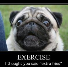 Pugs always mis-hear!