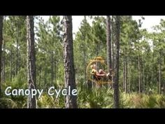 Zipline – Cypress Canopy Cycle | Forever Florida