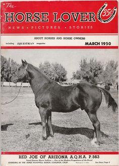 Red Joe of Arizona Quarter Horse