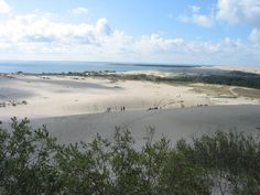 the great dunes on the curonian spit.