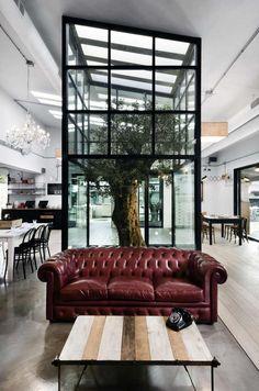 56 meilleures images du tableau arbre d co am nagement. Black Bedroom Furniture Sets. Home Design Ideas