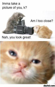 Am I too close? - DayLoL.com - Your Daily LoL!