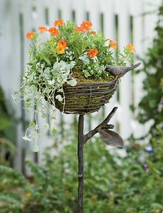 Sweet bird nest planter