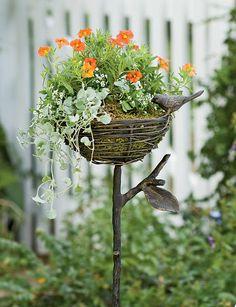 Sweet bird nest planter