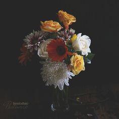 Flower Art, Love Story, Art Photography, Bloom, Flowers, Fabric, Painting, Instagram, Tejido