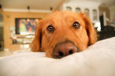 if i stare long enough...she'll wake up