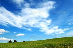 Green field and sky - Background - PhotoDune Item for Sale