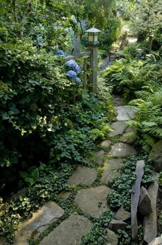 I love how this garden path has a seat to draw you forward, yet the path continues beyond, asking you to make a choice...sit, or move ahead because curiosity has gotten the better of you