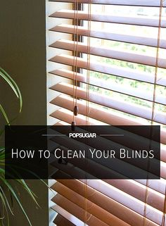 Just add viniger, dish soap, water in a bottle sprayer and ready to clean. Sort it on blinds and why not on windows too.