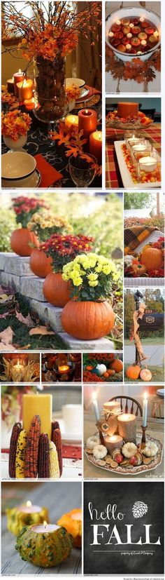 DIFERENTES HERMOSOS ADORNOS PARA DECORAR TU CASA EN ESTE OTOÑO Hola Chicas!! Les tengo una galeria de fotografías con distintas ideas para hacer decoraciones para este otoño, todas estan muy lindas y son cosas que puedes hacer tu misma con elementos naturales, escoge la que mas te gusta y decora tu casa.