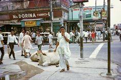 Picture Source, West Bengal, Kolkata, Childhood Memories, Street View, City, Satyajit Ray, History Pics, Mumbai