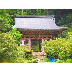 """【sacra_0519】さんのInstagramをピンしています。 《. 【教えたくないけど行って欲しい最強パワースポット☄✨】 .  I went to shimyouin.🐉✨ Forest of this temple has become a model of the movie """"Princess Mononoke"""".🌿🐕👸🏻🌲 Silent beauty of this place carries a sense of a mystical presence.✨☄✨ . . 京都 鴨川の水源にある『志明院』に初めて行ってきました🙌🏻✨ .  ここは、司馬遼太郎さんがここで起こった事、感じた事を宮崎駿さんに伝えた事によって、あの不朽の名作『もののけ姫』が完成されたとされるモデルのひとつの森らしいです💡 . 屋久島がモデルだということは知ってる方が多いと思いますが、これは私もお寺の方にお聞きして初めて知りました✨! . .  山門をくぐった瞬間、一気にエネルギーが変わりました。 .  まさに『秘境』。…"""