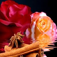CINNAMON ROSES Candle Soap Making Fragrance Oil