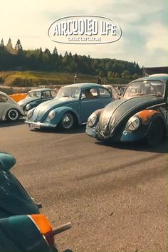 Footage from the stunning Aircooled Parade at Le Bug Show - SPA Belgium fusca videos Aircooled Parade at Le Bug Show Volkswagen Type 2, Volkswagen Group, Vw Bus, Porsche Cars, Vw Beetles, Van Life, Super Cars, Classic Cars, Monster Trucks
