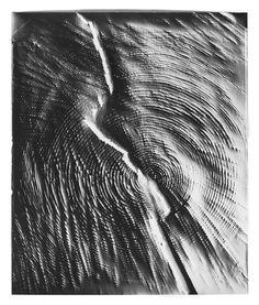 photogramskleamckenna3.jpg (1275×1500)