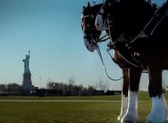 Budweiser created a moving commercial after the September 11th attacks. Anheuser Busch paid to only run the ad once, during the 2002 Super Bowl.