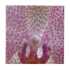 PUR-polarize Orchid Ceramic Tile