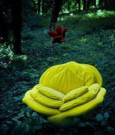 Luxury Rose Chair by Masanori Umeda LMR Meditation Space?