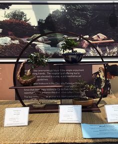 Shohin Display Bonsai at the Minnesota Bonsai Society 2016 Mother's Day Show.
