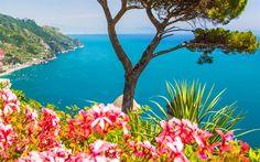 Lataa kuva Amalfi, meri, rannikolla, kukkia, vuoret, Italia