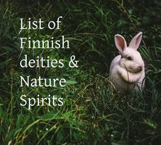 List of Finnish Deities and Nature Spirits Finnish mythology and folk tales include countless amount of elementals, nature spirits and deities. World view of the ancient Finno-Ugric tribes was animistic and they believed that every single.