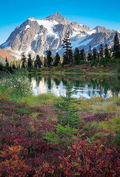 ✯ Mount Shuksan, Washington