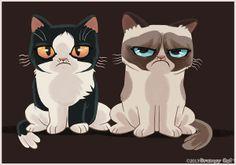 Pokey and GrumpyCat, aka TardarSauce  <3 <3