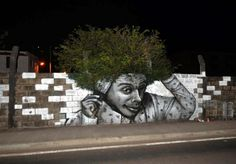 Cool street art combined with nature