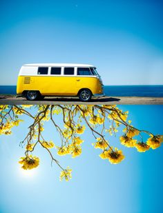 """You just can't live that negative way. Make way for the positive day."" ~ Bob Marley (yellow VW bus is a happy bug) Volkswagen Transporter, Volkswagen Bus, Vw T1 Camper, Campers, Volkswagen Beetles, My Dream Car, Dream Cars, Combi Hippie, Carros Vintage"