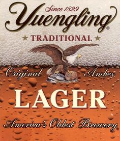 6d5c8f02eb1 Yuengling-was just introduced to this beer at my birthday dinner by my sons  uncle.