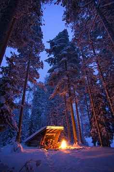 ☆ Fire :¦: Photograph By Antti-Jussi Liikala ☆