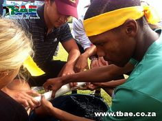 WPAA Youth Development Corporate Fun Day team building event in Cape Town, facilitated and coordinated by TBAE Team Building and Events Team Building Events, Team Building Activities, Cape Town, Good Day, Bae, Youth, Buen Dia, Good Morning, Hapy Day