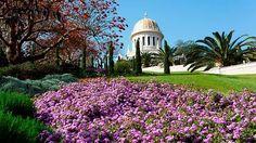 Bahá'í gardens… Stunning Haifa in Palestine