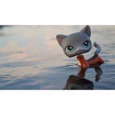 { #littlestpetshop #lps } Jasmine  {we'll sort of...}