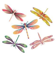 Dragonflies vector Free dragonfly clipart