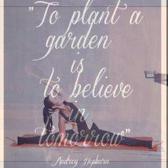 Audrey Hepburn yoga stretching barre quotes #sbfspringfit