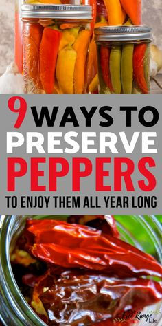 Preserving Peppers: 9 Ways to Preserve Peppers At Home Canning Hot Peppers, Pickled Hot Peppers, Hot Peppers In Oil Recipe, Pickling Peppers, Stuffed Banana Peppers, Stuffed Sweet Peppers, Pickled Pepper Recipe, Hot Pepper Recipes, Low Acid Recipes