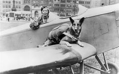 "Lance Corporal Ken Bailey was asked to train up the ""paradogs"" so they could be used as the ""eyes and ears"" of the soldiers on the ground. The dogs, which would be given minimal food and water before the jump, were being prepared to parachute into Normandy for D-Day landing and would freeze if they heard a sound"