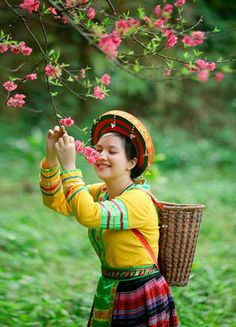 Spring in the Northwest of Vietnam