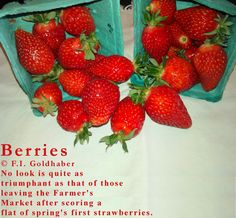 """""""Berries,"""" first """"published"""" as part of Portland Mall Management Inc. Be Grateful event, displayed on signs posted in the transit mall area, Portland, OR. Poem and photograph © F.I. Goldhaber. http://goldhaber.net/poetry.php#Others"""