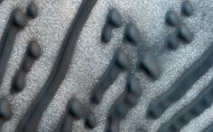 This image of dark dunes on Mars was taken on Feb. 6, 2016, by the HiRISE camera on NASA's Mars Reconnaissance Orbiter. These dunes are influenced by local topography. The shape and orientation of dunes can usually tell us about wind direction, but in this image, the dune-forms are very complex, so it's difficult to know the wind direction.