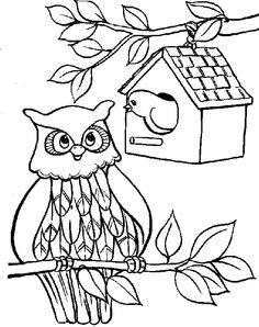 Cute Owl See Friends Coloring Pages - Owl Coloring Pages : KidsDrawing – Free Coloring Pages Online