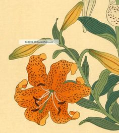 korin_japanese_woodblock_print_tiger_lilies___shima_art_co___1930_2_lgw.jpg (1200×1338)