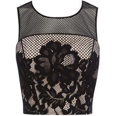 Coast Fantasia Lace Top, Black (€34) ❤ liked on Polyvore featuring tops, blouses, crop tops, crop, shirts, shirt blouse, sleeveless shirts, lace sleeve shirt, see through blouse and cropped tops