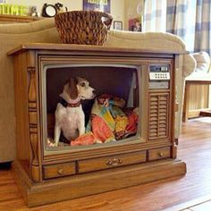 Old TV DIY Pet Bed: The funny thing is that it looks like your pet is on tv! Tv Dog Beds, Diy Dog Bed, Old Tv Consoles, Media Consoles, Dog Houses, Diy Stuffed Animals, How To Make Bed, Fur Babies, Your Pet