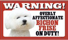 Warning overly affectionate Bichon Frise on duty!   I should put this up!  Max gives soooo many kisses!