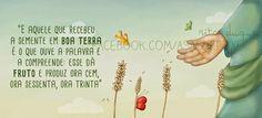 Asas de peixe: A semente em boa terra
